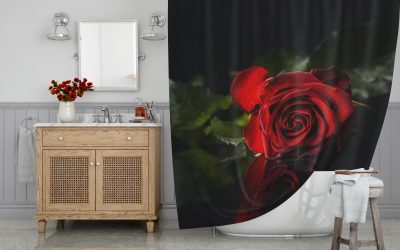 Red rose on black background Shower Curtain